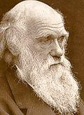 Darwin.portrait